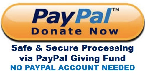 This image has an empty alt attribute; its file name is ppgfdonate.jpg
